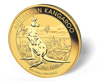 Picture of 1/10 oz Australian Gold Kangaroo (Common Date)