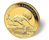 Picture of 2016 1/10 oz Australian Gold Kangaroo