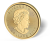 Picture of 1/4 oz Canadian Gold Maple Leaf Coins - 2016