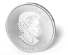 Picture of 1 oz Canadian Silver Maple Leaf Coins - 2016