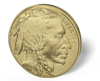 Picture of 1 oz American Gold Buffalo (Common Date)