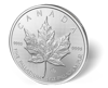 Picture of 1 oz Canadian Palladium Maple Leaf - Common Date