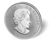 Picture of 1 oz Canadian Silver Superman - 2016