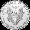 Picture of 2020 1 oz American Silver Eagle